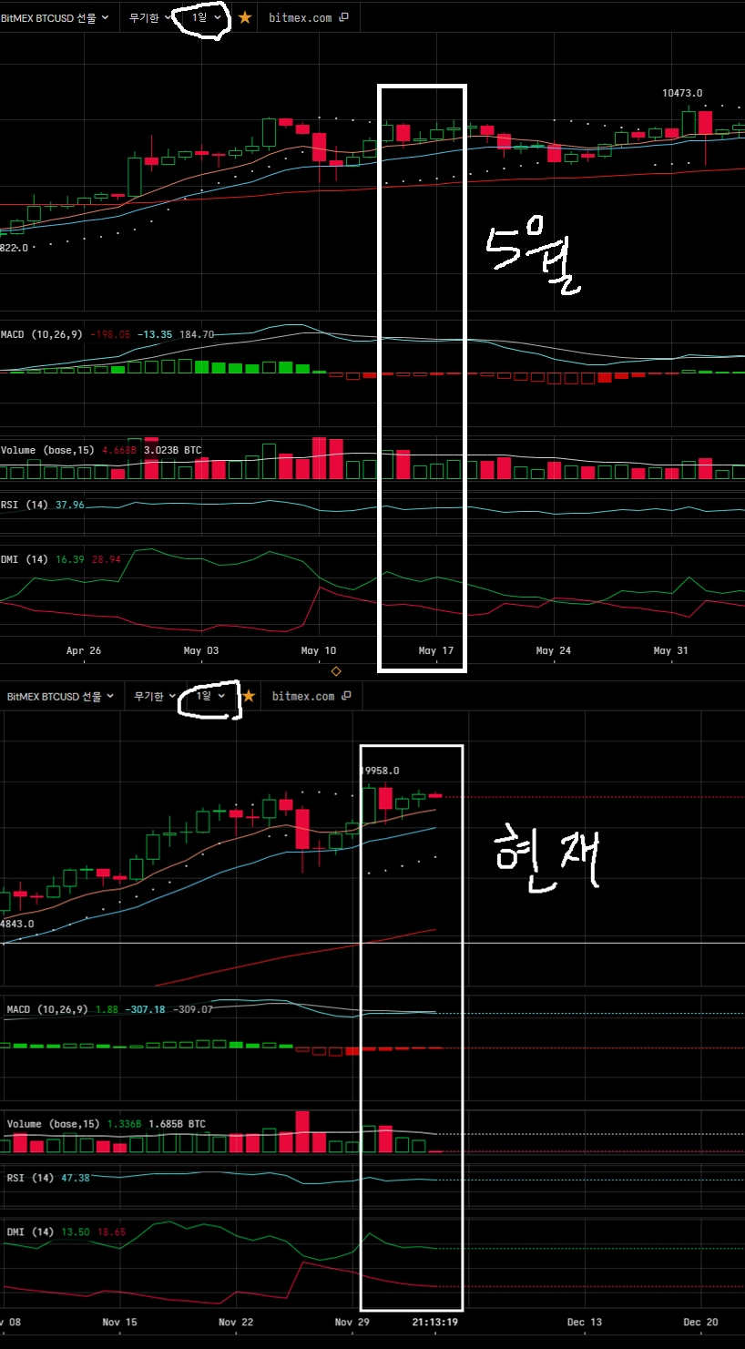 5월현재일봉비교.jpg