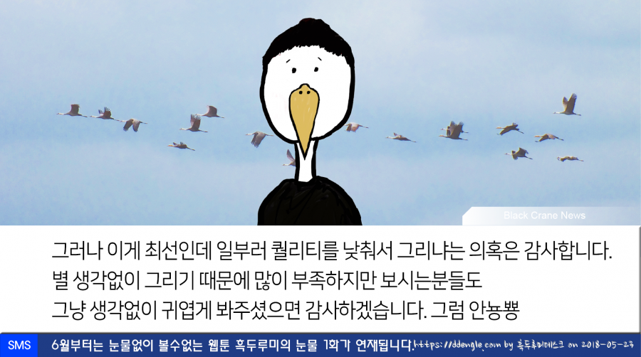 0523_black crane news11.png
