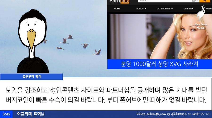 0523_black crane news8.png