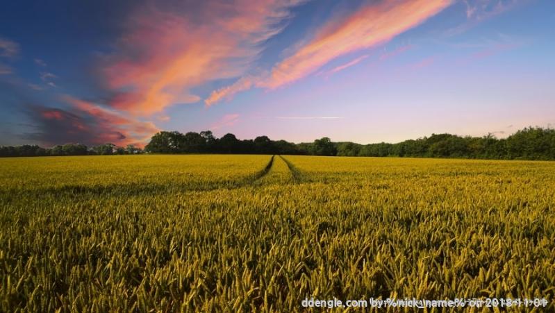 countryside-2326787_960_720.jpg